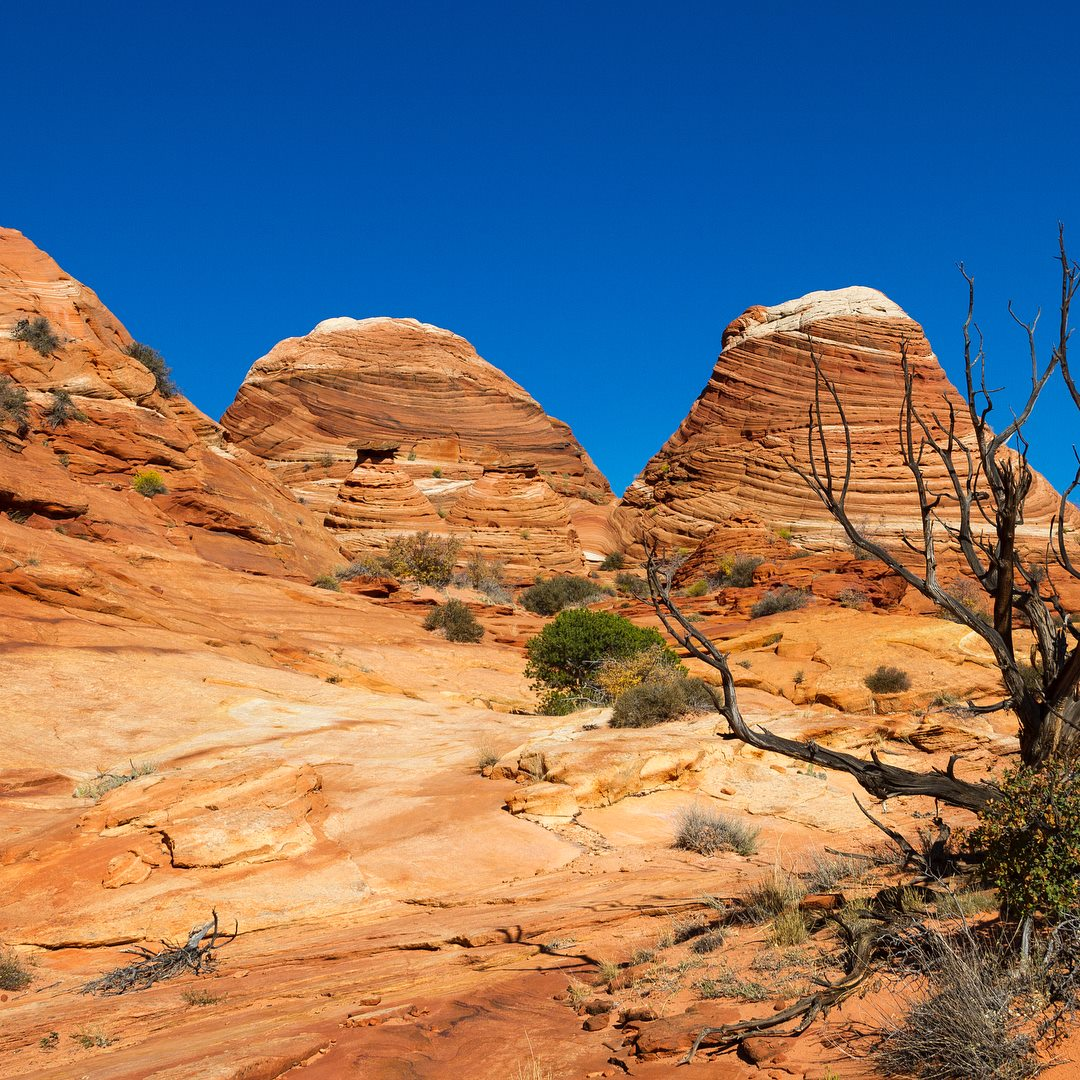 north-coyote-buttes